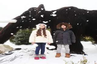Tayto Park Attraction - Ice Valley