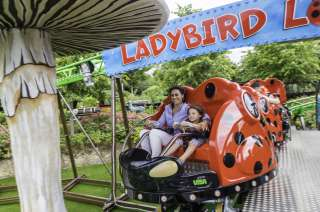 Tayto Park Attraction - Ladybird Loop
