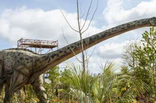 Tayto Park Attraction - Dinosaurs Alive